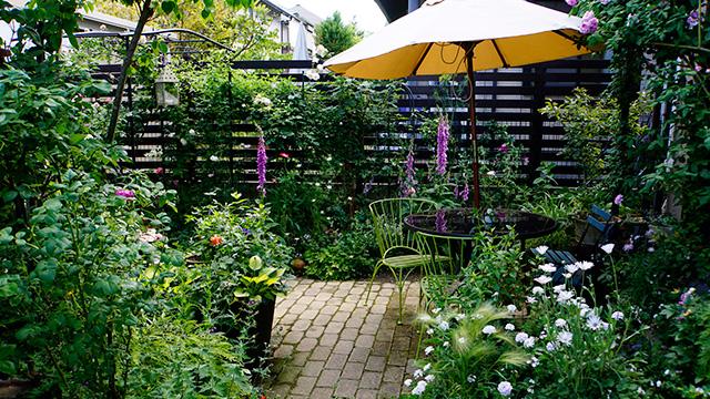 植物を用いて庭の目隠しをする!